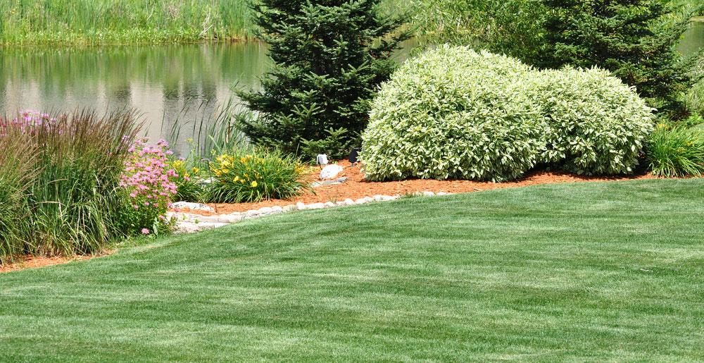 lawn mowing livonia mi